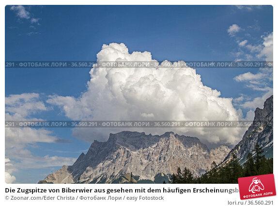 Die Zugspitze von Biberwier aus gesehen mit dem häufigen Erscheinungsbild... Стоковое фото, фотограф Zoonar.com/Eder Christa / easy Fotostock / Фотобанк Лори