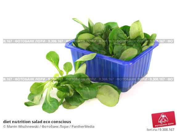 Купить «diet nutrition salad eco conscious», фото № 9308167, снято 20 июля 2019 г. (c) PantherMedia / Фотобанк Лори