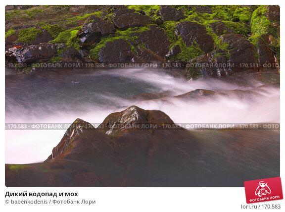 Дикий водопад и мох, фото № 170583, снято 4 января 2006 г. (c) Бабенко Денис Юрьевич / Фотобанк Лори