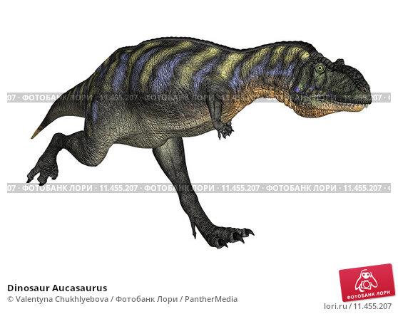 Купить «Dinosaur Aucasaurus», иллюстрация № 11455207 (c) PantherMedia / Фотобанк Лори