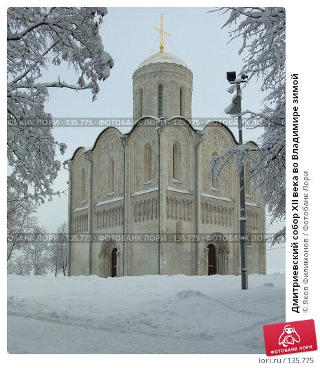 Дмитриевский собор XII века во Владимире зимой, фото № 135775, снято 29 ноября 2007 г. (c) Яков Филимонов / Фотобанк Лори