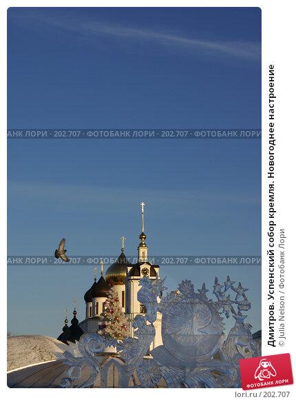 Дмитров. Успенский собор кремля. Новогоднее настроение, фото № 202707, снято 23 декабря 2007 г. (c) Julia Nelson / Фотобанк Лори