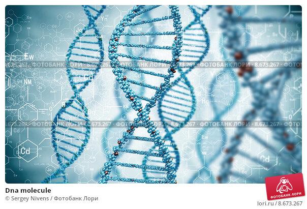 Купить «Dna molecule», иллюстрация № 8673267 (c) Sergey Nivens / Фотобанк Лори