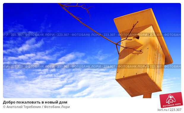 Купить «Добро пожаловать в новый дом», фото № 223307, снято 5 января 2008 г. (c) Анатолий Теребенин / Фотобанк Лори