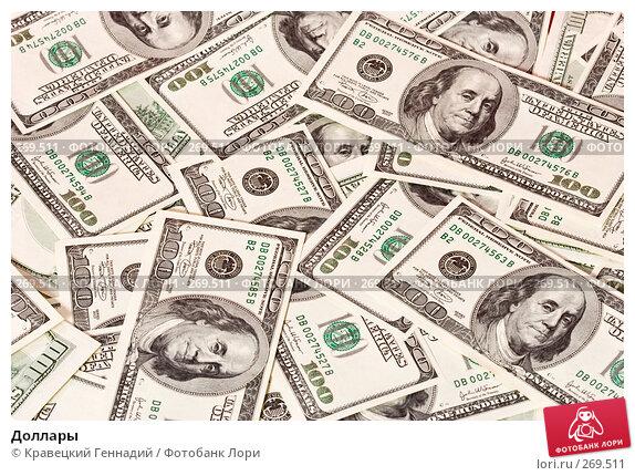 Купить «Доллары», фото № 269511, снято 9 января 2005 г. (c) Кравецкий Геннадий / Фотобанк Лори
