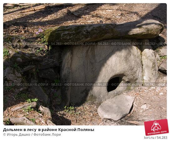 Дольмен в лесу  в районе Красной Поляны, фото № 54283, снято 26 апреля 2007 г. (c) Игорь Дашко / Фотобанк Лори