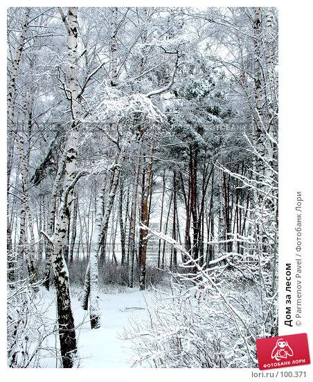 Купить «Дом за лесом», фото № 100371, снято 15 февраля 2007 г. (c) Parmenov Pavel / Фотобанк Лори