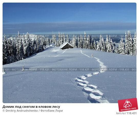 Домик под снегом в еловом лесу, фото № 118431, снято 15 февраля 2007 г. (c) Dmitriy Andrushchenko / Фотобанк Лори