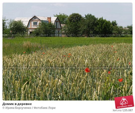 Домик в деревне, фото № 235087, снято 17 июня 2007 г. (c) Ирина Борсученко / Фотобанк Лори