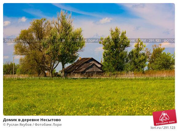 Домик в деревне Несытово, фото № 291123, снято 17 мая 2008 г. (c) Руслан Якубов / Фотобанк Лори