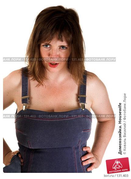 Домохозяйка. Housewife, фото № 131403, снято 19 июля 2007 г. (c) Коваль Василий / Фотобанк Лори