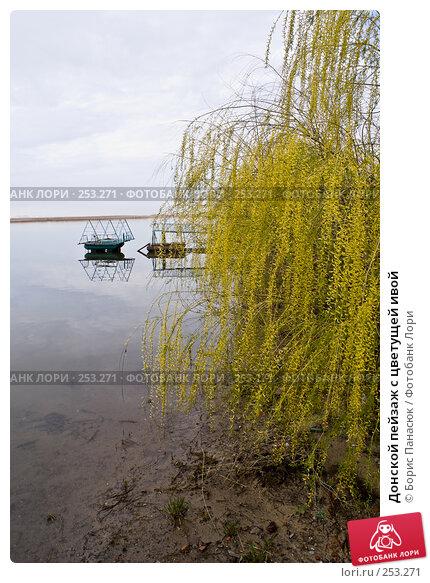 Донской пейзаж с цветущей ивой, фото № 253271, снято 11 апреля 2008 г. (c) Борис Панасюк / Фотобанк Лори