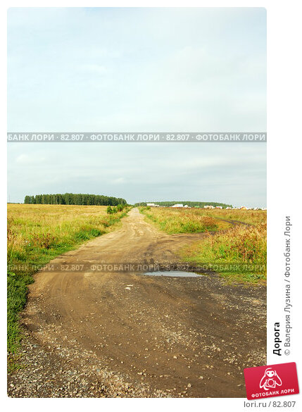 Дорога, фото № 82807, снято 29 августа 2007 г. (c) Валерия Потапова / Фотобанк Лори