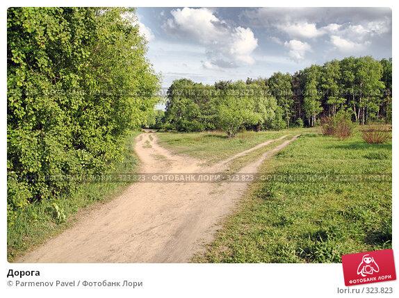 Дорога, фото № 323823, снято 18 мая 2008 г. (c) Parmenov Pavel / Фотобанк Лори