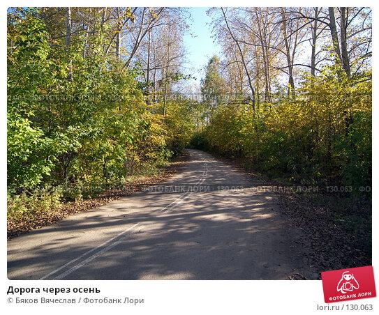 Дорога через осень, фото № 130063, снято 20 сентября 2007 г. (c) Бяков Вячеслав / Фотобанк Лори
