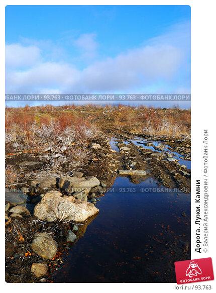 Купить «Дорога. Лужи. Камни», фото № 93763, снято 6 октября 2007 г. (c) Валерий Александрович / Фотобанк Лори