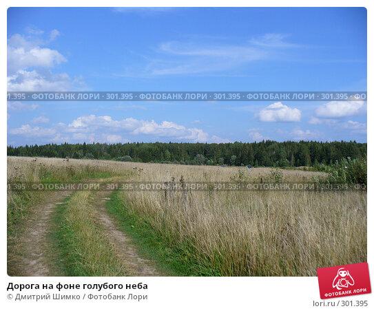 Купить «Дорога на фоне голубого неба», фото № 301395, снято 25 августа 2007 г. (c) Дмитрий Шимко / Фотобанк Лори