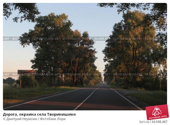 Дорога, окраина села Творинишино. Редакционное фото, фотограф Дмитрий Неумоин / Фотобанк Лори