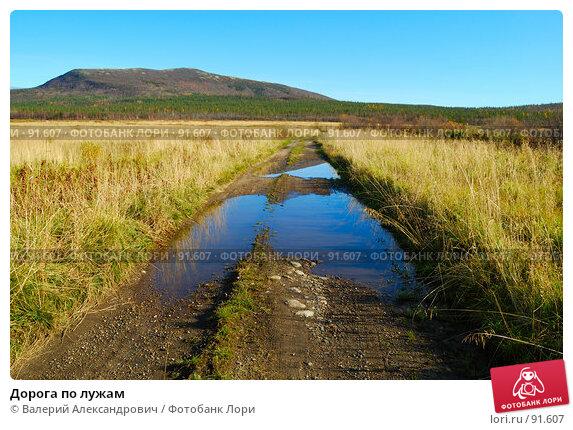 Дорога по лужам, фото № 91607, снято 29 сентября 2007 г. (c) Валерий Александрович / Фотобанк Лори