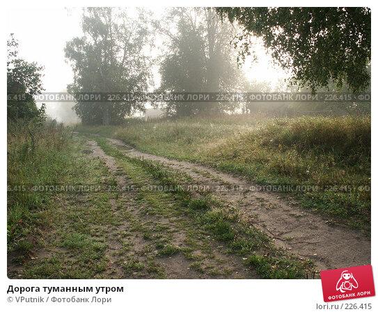 Купить «Дорога туманным утром», фото № 226415, снято 19 августа 2006 г. (c) VPutnik / Фотобанк Лори