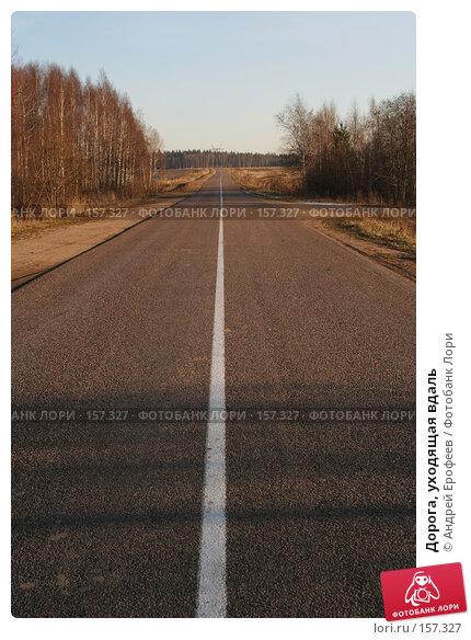Купить «Дорога, уходящая вдаль», фото № 157327, снято 4 ноября 2005 г. (c) Андрей Ерофеев / Фотобанк Лори