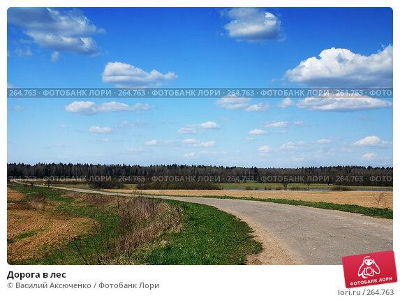 Дорога в лес, фото № 264763, снято 26 апреля 2008 г. (c) Василий Аксюченко / Фотобанк Лори