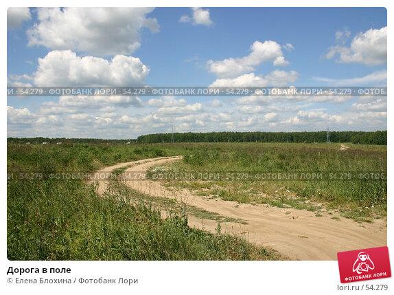 Купить «Дорога в поле», фото № 54279, снято 20 июня 2007 г. (c) Елена Блохина / Фотобанк Лори