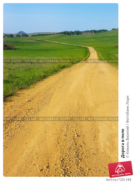 Дорога в поле, фото № 123143, снято 11 июня 2006 г. (c) Коваль Василий / Фотобанк Лори