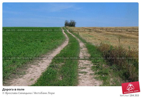Дорога в поле, фото № 284303, снято 11 августа 2007 г. (c) Ярослава Синицына / Фотобанк Лори