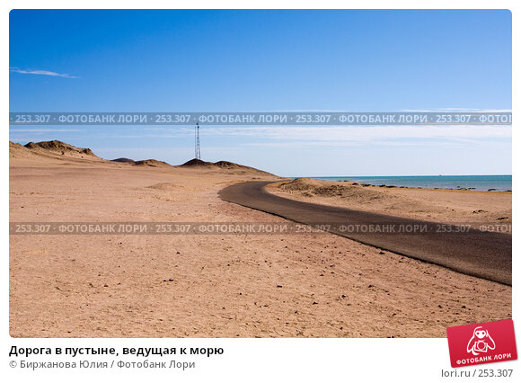 Дорога в пустыне, ведущая к морю, фото № 253307, снято 2 января 2008 г. (c) Биржанова Юлия / Фотобанк Лори