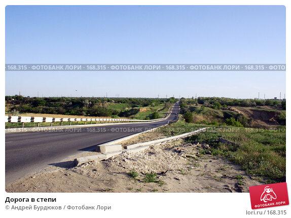 Купить «Дорога в степи», фото № 168315, снято 26 мая 2007 г. (c) Андрей Бурдюков / Фотобанк Лори