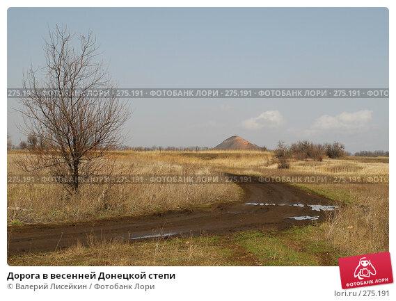 Дорога в весенней Донецкой степи, фото № 275191, снято 24 марта 2008 г. (c) Валерий Лисейкин / Фотобанк Лори
