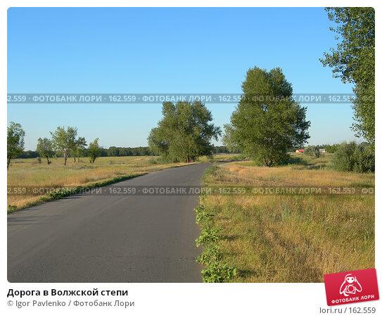 Дорога в Волжской степи, фото № 162559, снято 22 июля 2006 г. (c) Igor Pavlenko / Фотобанк Лори