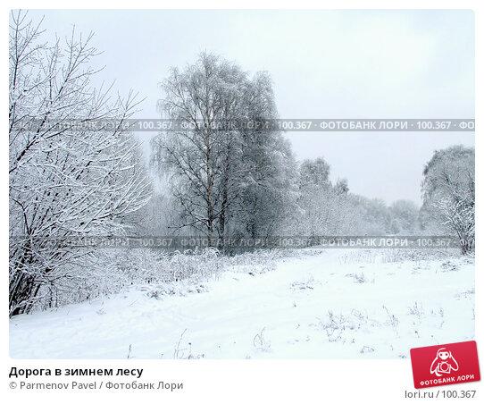 Дорога в зимнем лесу, фото № 100367, снято 15 февраля 2007 г. (c) Parmenov Pavel / Фотобанк Лори