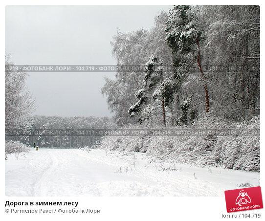 Дорога в зимнем лесу, фото № 104719, снято 23 октября 2016 г. (c) Parmenov Pavel / Фотобанк Лори