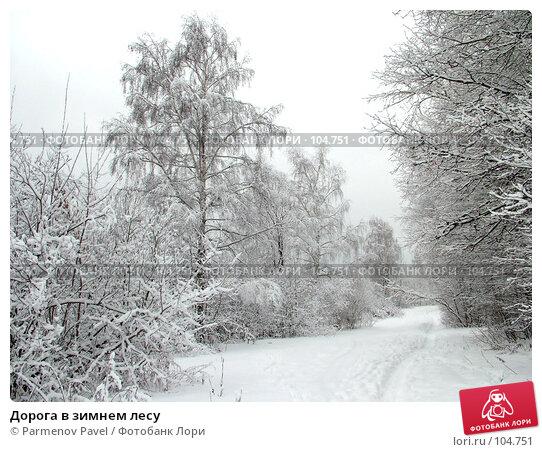 Дорога в зимнем лесу, фото № 104751, снято 27 мая 2017 г. (c) Parmenov Pavel / Фотобанк Лори