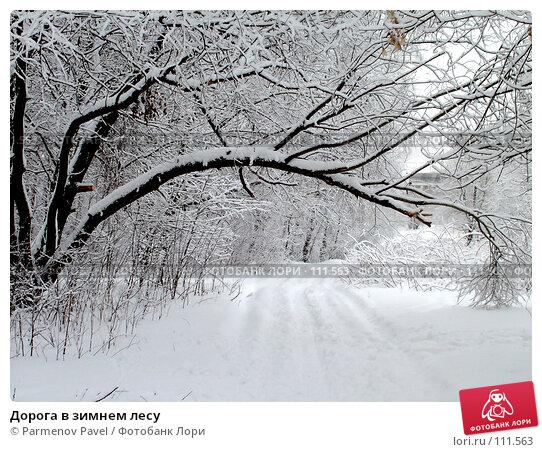 Дорога в зимнем лесу, фото № 111563, снято 15 февраля 2007 г. (c) Parmenov Pavel / Фотобанк Лори