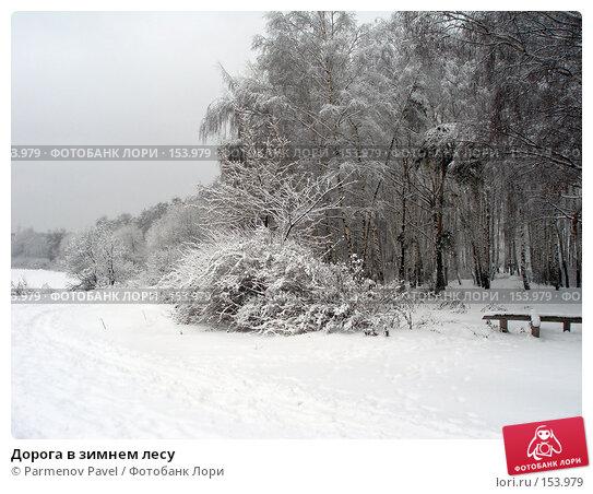 Дорога в зимнем лесу, фото № 153979, снято 15 февраля 2007 г. (c) Parmenov Pavel / Фотобанк Лори