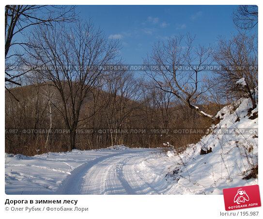 Дорога в зимнем лесу, фото № 195987, снято 31 января 2008 г. (c) Олег Рубик / Фотобанк Лори
