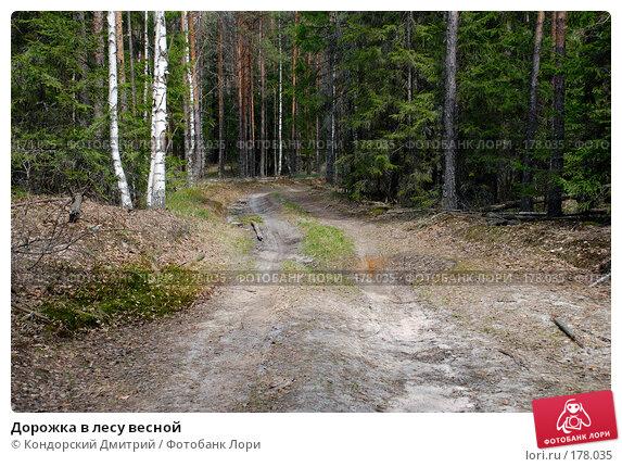 Дорожка в лесу весной, фото № 178035, снято 5 мая 2007 г. (c) Кондорский Дмитрий / Фотобанк Лори