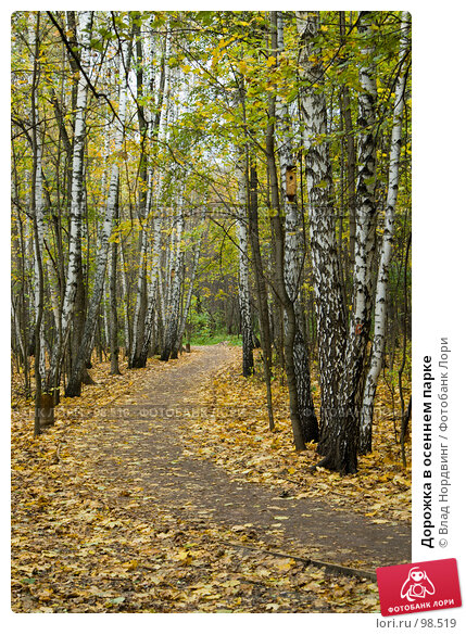 Дорожка в осеннем парке, фото № 98519, снято 12 октября 2007 г. (c) Влад Нордвинг / Фотобанк Лори