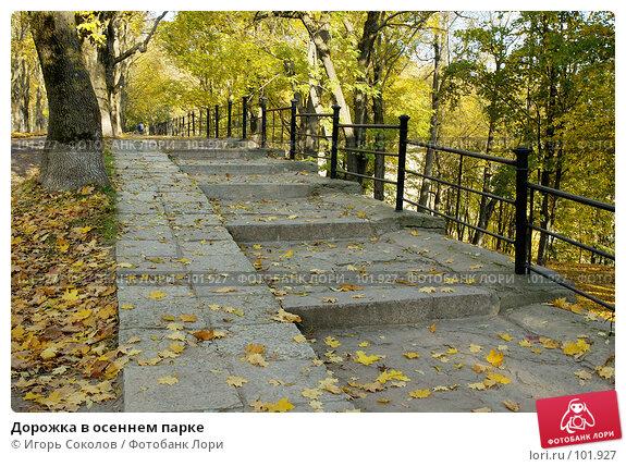 Дорожка в осеннем парке, фото № 101927, снято 25 марта 2017 г. (c) Игорь Соколов / Фотобанк Лори