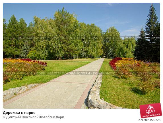 Дорожка в парке, фото № 155723, снято 12 сентября 2007 г. (c) Дмитрий Ощепков / Фотобанк Лори