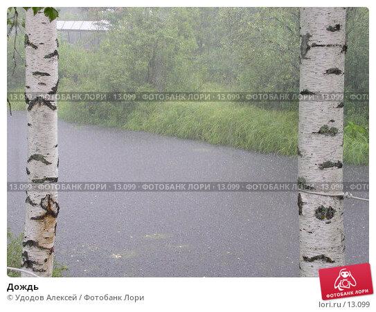 Дождь, фото № 13099, снято 2 августа 2005 г. (c) Удодов Алексей / Фотобанк Лори