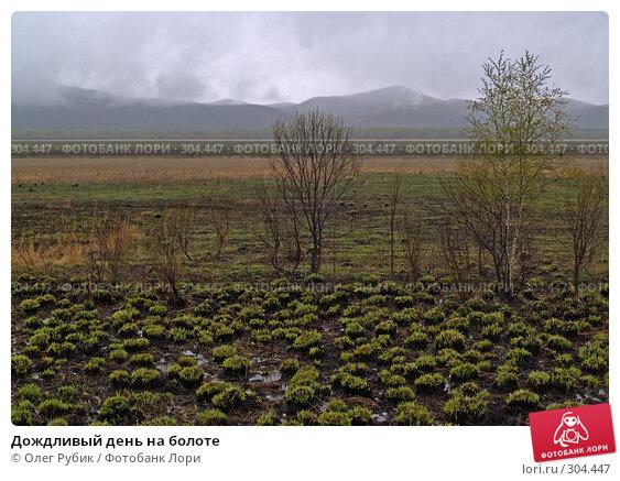 Дождливый день на болоте, фото № 304447, снято 27 апреля 2008 г. (c) Олег Рубик / Фотобанк Лори