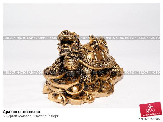 Купить «Дракон и черепаха», фото № 158007, снято 22 декабря 2007 г. (c) Сергей Бочаров / Фотобанк Лори