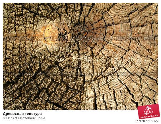 Купить «Древесная текстура», фото № 218127, снято 12 декабря 2017 г. (c) ElenArt / Фотобанк Лори