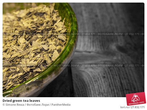 Купить «Dried green tea leaves», фото № 27832171, снято 19 октября 2018 г. (c) PantherMedia / Фотобанк Лори