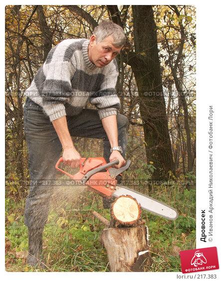 Дровосек, фото № 217383, снято 20 октября 2007 г. (c) Иванов Аркадий Николаевич / Фотобанк Лори