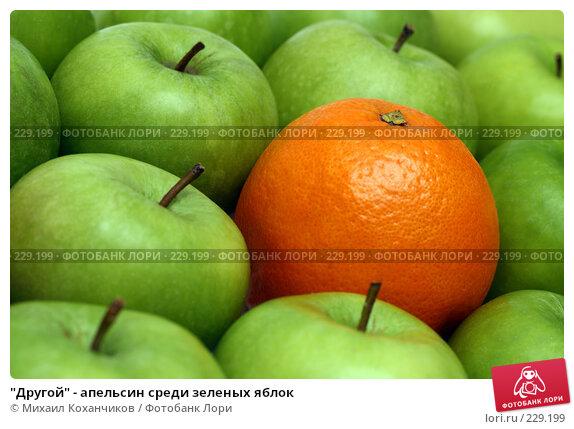 """""""Другой"""" - апельсин среди зеленых яблок, фото № 229199, снято 16 марта 2008 г. (c) Михаил Коханчиков / Фотобанк Лори"""